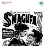 Shagufa