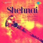 Shehnai