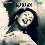 Nadaan