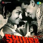 Shikar