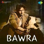 Bawra