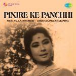Pinjre Ke Panchhi