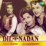 Dil-E-Nadan
